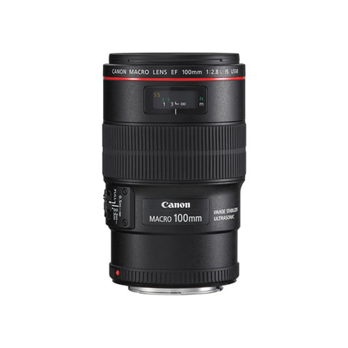 Canon EF 100mm f2.8L Macro IS USM Lens Online Buy Mumbai India 01
