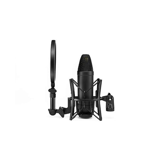 Rode NT1 Microphone with AI1 Audio Interface Online Buy Mumbai India 02