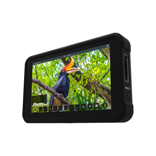 Atomos Shinobi 5.2 4K HDMI Monitor Online Buy Mumbai India 01
